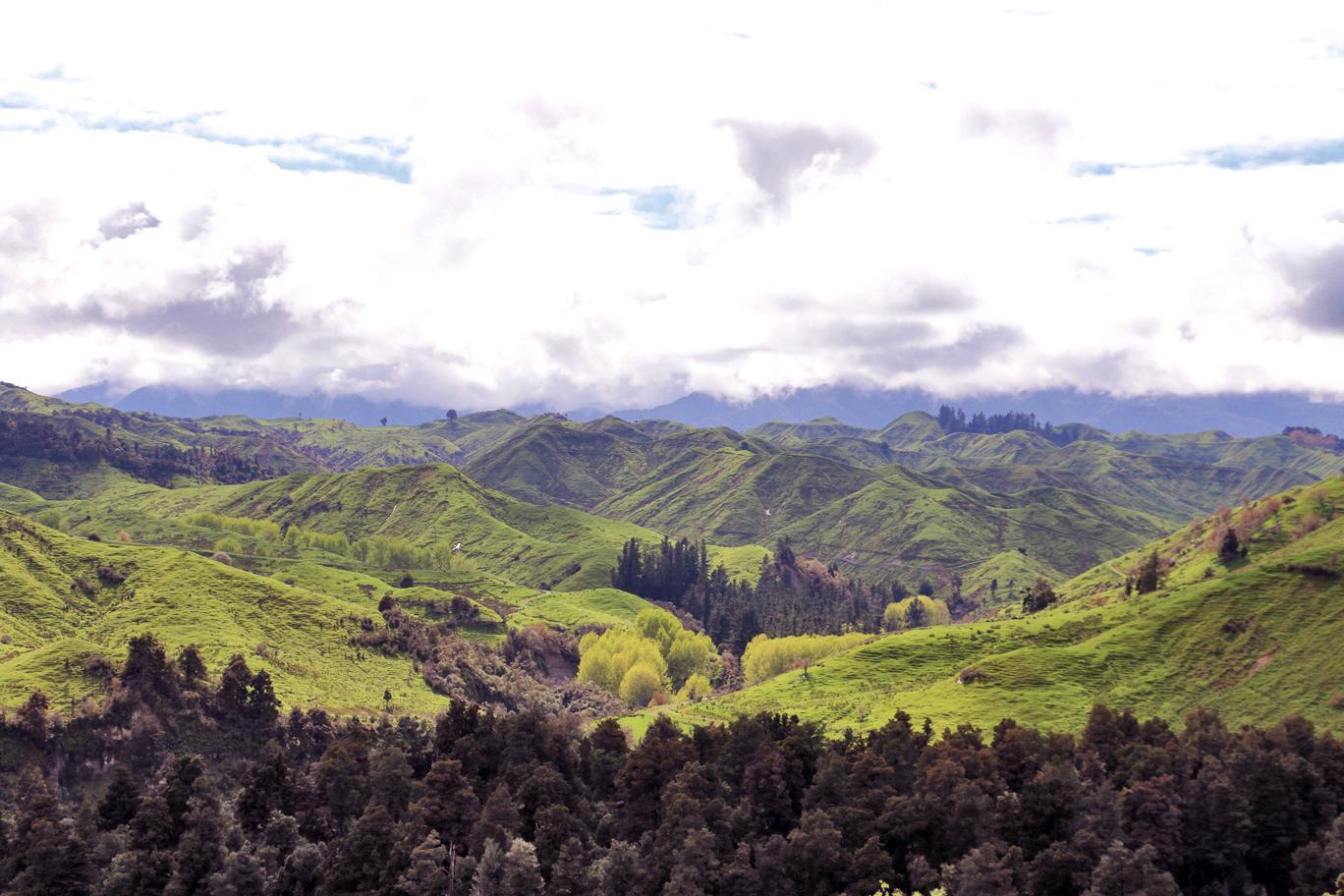 Les collines à perte de vue...