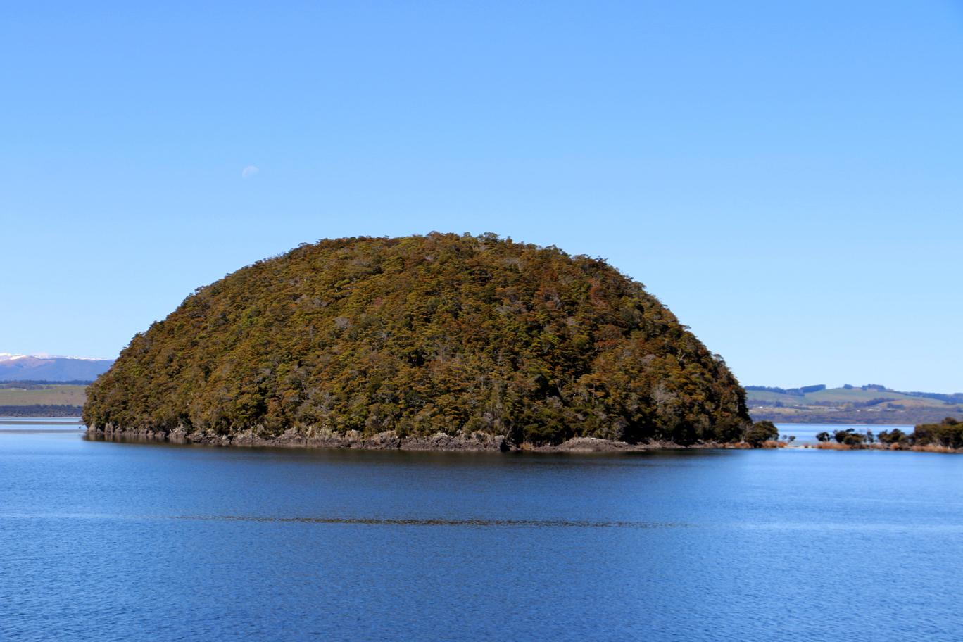 Une tortue géante en forme d'île (ou l'inverse).