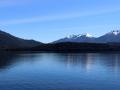 Le lac de Te Anau et… un goéland bien de chez nous !