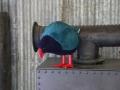 Ça, c'est le Takahe. C'est très rare. Celui-ci est un faux. J'vous jure.
