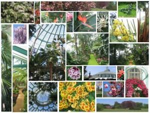 jardinsduroi